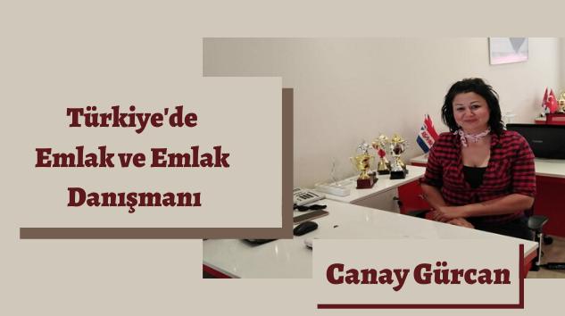 Türkiye'de Emlak ve Emlak Danışmanı