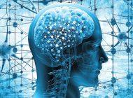 Beyin sağlığınız için dijital detoks yapın